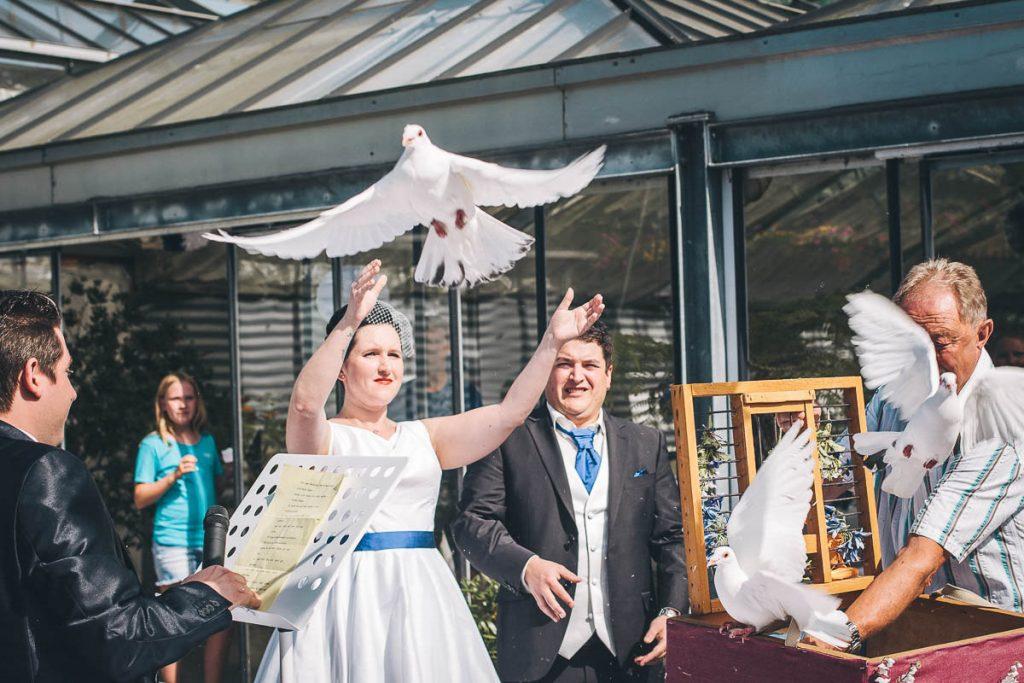 Hochzeitsfotograf Stuttgart Oliver Lichtblau Hochzeit Gaertnerei Kraushaar Unterensingen 38
